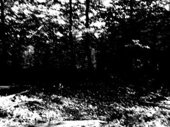 Na końcu drogi – Björn B. Jakobsson